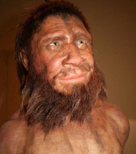Homme de Spy, Néerdantalien, -36000 ans